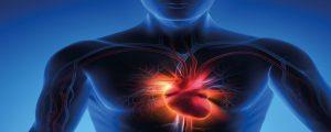 Centro per lo Studio del Trattamento dello Scompenso Cardiaco (CEST-SC)